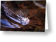 Gentle Ripple In River Greeting Card