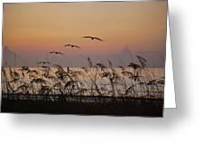 Gentle Sunrise Greeting Card