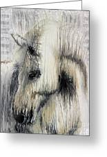 Gentle White Horse Greeting Card