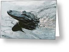 Genuine New O Alligator Greeting Card
