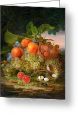 George Forster  Still Life With Fruit And A Birds Nest Greeting Card