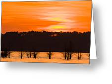 George T. Bagby State Park Sunset Greeting Card