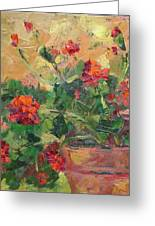 Geraniums II Greeting Card