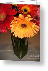 Gerbera Daisies - Vased Greeting Card