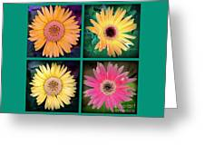 Gerbera Daisy Collage In Square Greeting Card
