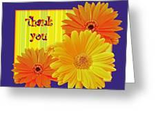 Gerbera Daisy Thank You Card Greeting Card