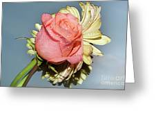 Gerbers With The Rose Greeting Card