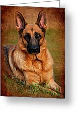 German Shepherd Dog Portrait  Greeting Card by Angie Tirado