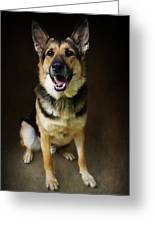 German Shepherd Dog Thor Greeting Card