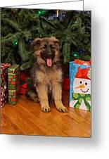 German Shepherd Puppy Card Greeting Card