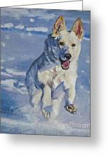 German Shepherd White In Snow Greeting Card by Lee Ann Shepard