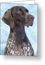 German Shorthaired Pointer 663 Greeting Card
