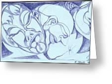 Gestation Greeting Card