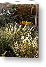 Lost In The Flower Garden Greeting Card