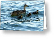 Getting Your Ducks In A Row Greeting Card