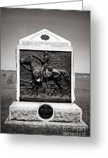 Gettysburg National Park 9th New York Cavalry Monument Greeting Card