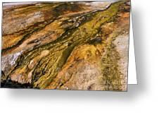 Geyser Basin Springs 2 Greeting Card