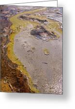 Geyser Basin Springs 4 Greeting Card