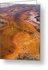 Geyser Basin Springs 6 Greeting Card