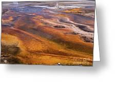 Geyser Basin Springs 7 Greeting Card