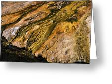 Geyser Basin Springs Greeting Card