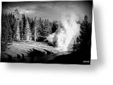 Geyser Greeting Card by Carrie Putz