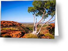 Ghost Gum On Kings Canyon - Northern Territory, Australia Greeting Card