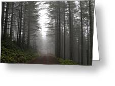 Ghost In The Woods Greeting Card