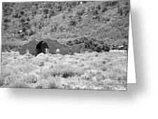 Ghost Of Colorado Greeting Card