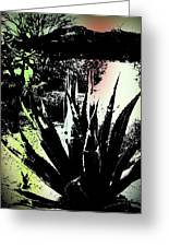 Giant Agave Greeting Card