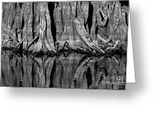 Giant Cypress Tree Trunk And Reflection 2 Greeting Card