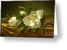 Giant Magnolias On A Cloth Greeting Card