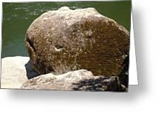 Giant Prehistoric Petrafied Tadpole Greeting Card
