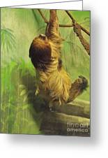 Giant Sloth     June          Indiana Greeting Card