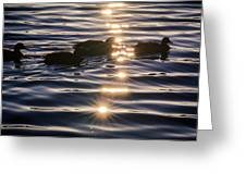 Gifts Of Sunshine Greeting Card