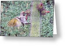 Gilded Flicker 4167 Greeting Card