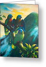 Gimie Dawn 1 - St. Lucia Parrots Greeting Card