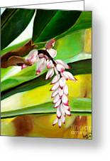 Ginger Bloom-2015 Greeting Card