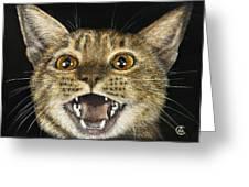 Ginger Cat Eyes Greeting Card