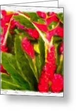 Ginger Plants On Kauai Greeting Card