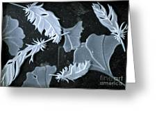 Ginko Leaves And Feathers Greeting Card