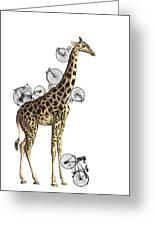 Giraffe And Bicycles Greeting Card