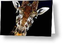 Giraffe Curiosity Greeting Card