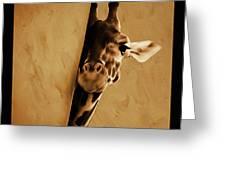 Giraffe Hiding  Greeting Card