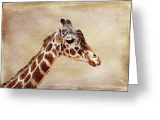 Giraffe Portrait With Texture Greeting Card