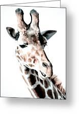 Giraffe II Greeting Card