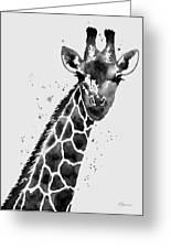 Giraffe In Black And White Greeting Card