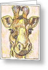 Giraffe Postcard Greeting Card