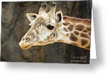 Giraffe Up Close Greeting Card