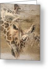 Giraffes, Big And Small Greeting Card
